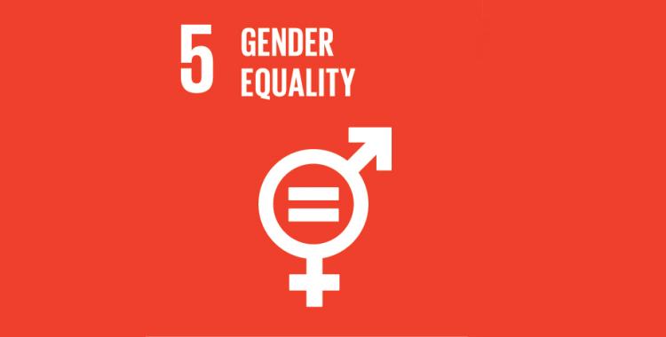 Ontwikkelingsdebat 'Gender mainstreaming in ontwikkelingssamenwerking: legitiem of neokoloniaal?'' (19/01)