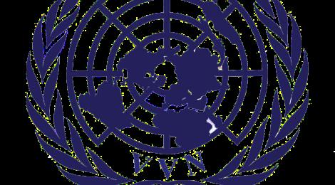 Keynote by Peter Van Laere, UN Chief of Protocol (3/12)