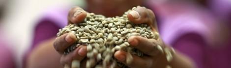 De Wereldwijde Beweging voor het Recht op Voedsel;  lezing door Professor Olivier De Schutter