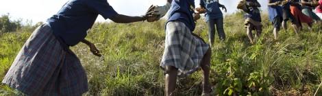 Conferentie: Wat Mangelt er aan het VN-Ontwikkelingssysteem en Hoe Lossen we Dit Op?
